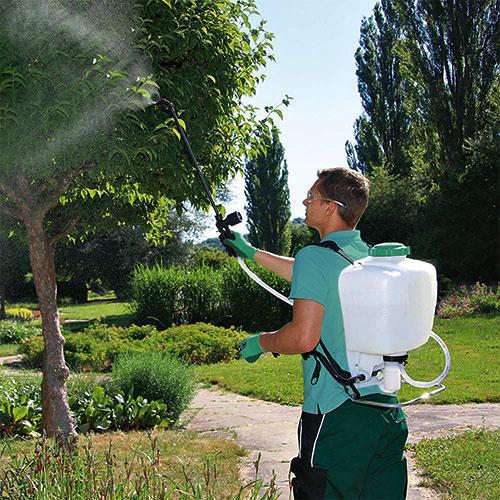 cometaverde-verde-pulizie-mantenimento